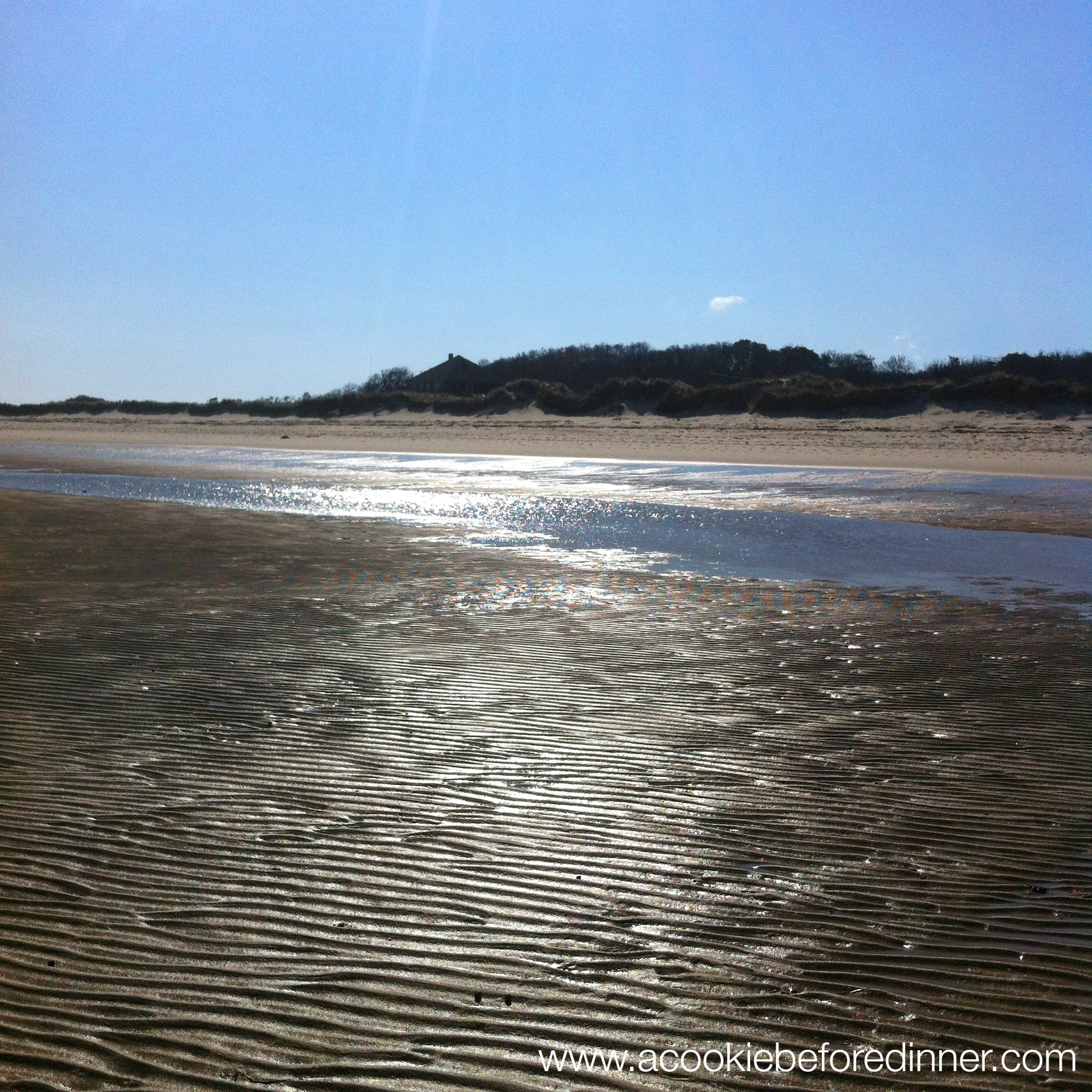 Low Tide At Linnell Beach 2