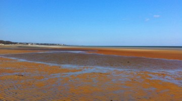 Linnell Beach Low Tide