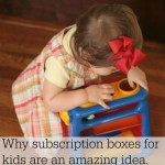 Why Subscription Boxes Are Amazing- A Sparkbox Toys Review