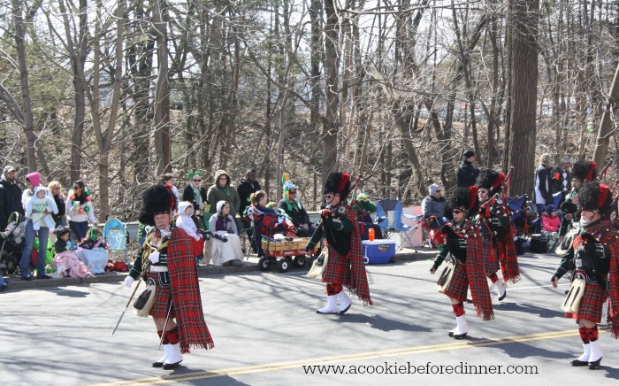 Holyoke St. Patrick's Day Parade is a great one! I've got tips to make your experience awesome!