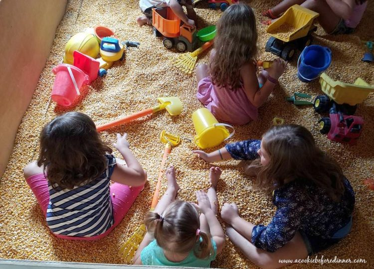 Girls playing in the corn box at Retreat Farm in Brattleboro VT