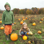 Cheap/Free Things To Do With Kids in Western MA This October