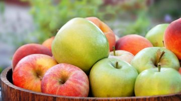 25 Apple Recipes To Make This Fall Yum!