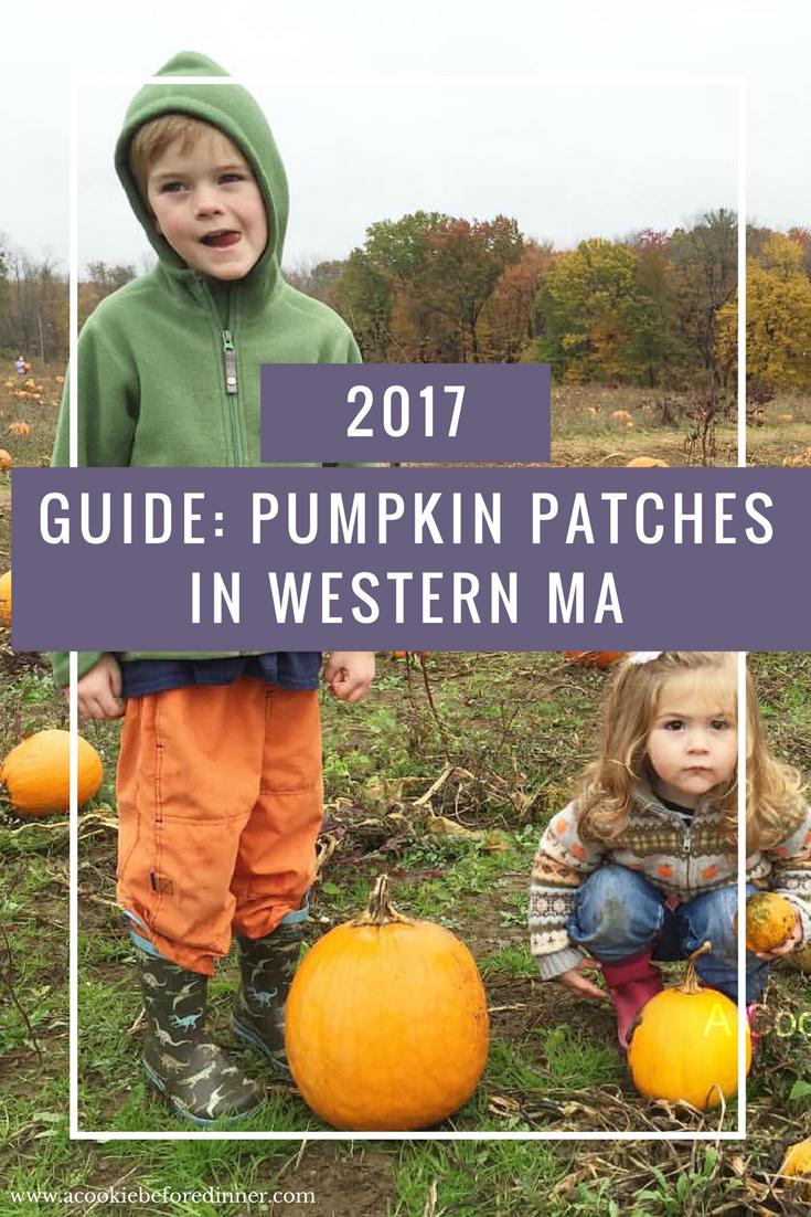 pumpkin patches western ma