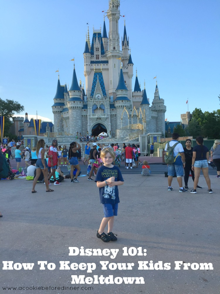 Planning a trip to Disney with a toddler? You need to read this epic post all about how to tame toddler tantrums at Disney with a toddler and school aged kid!