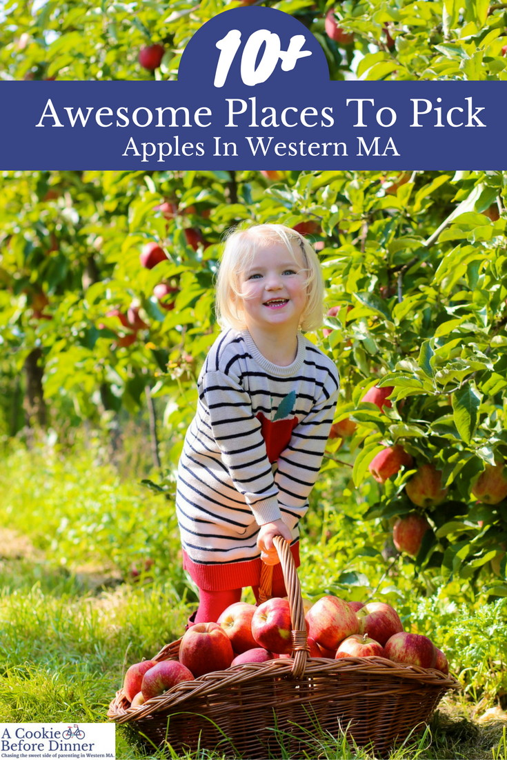 Wondering where to pick apples in Western MA? Here are 10 (plus) great spots!