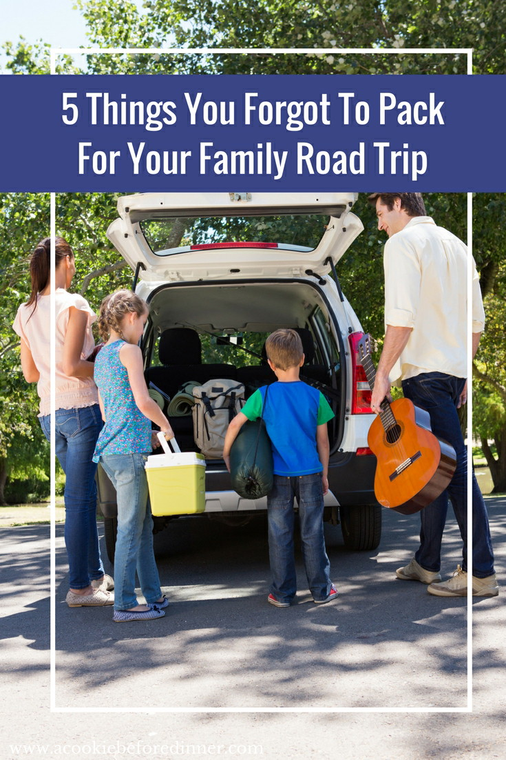 Road Trip Tips For Families. You totally forgot to pack these things for your family road trip!