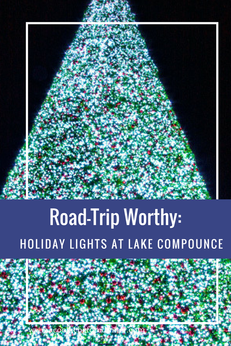Lake Compounce Holiday Lights