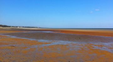 Linnell Beach Low Tide