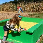 Cheap/Free Things To Do With Kids In Western MA This September
